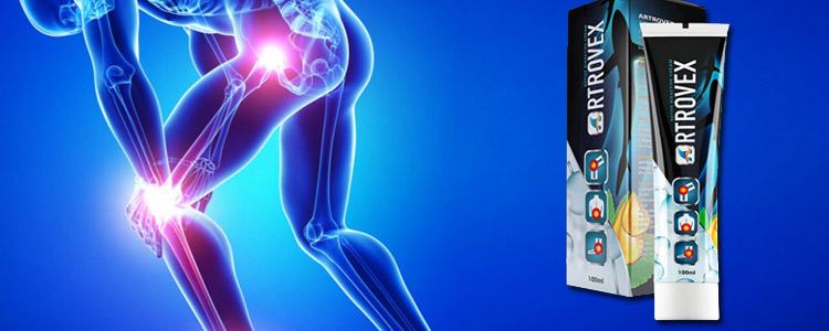 Care sunt ingredientele Artrovex?